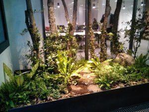 servicio de jardineria las rozas