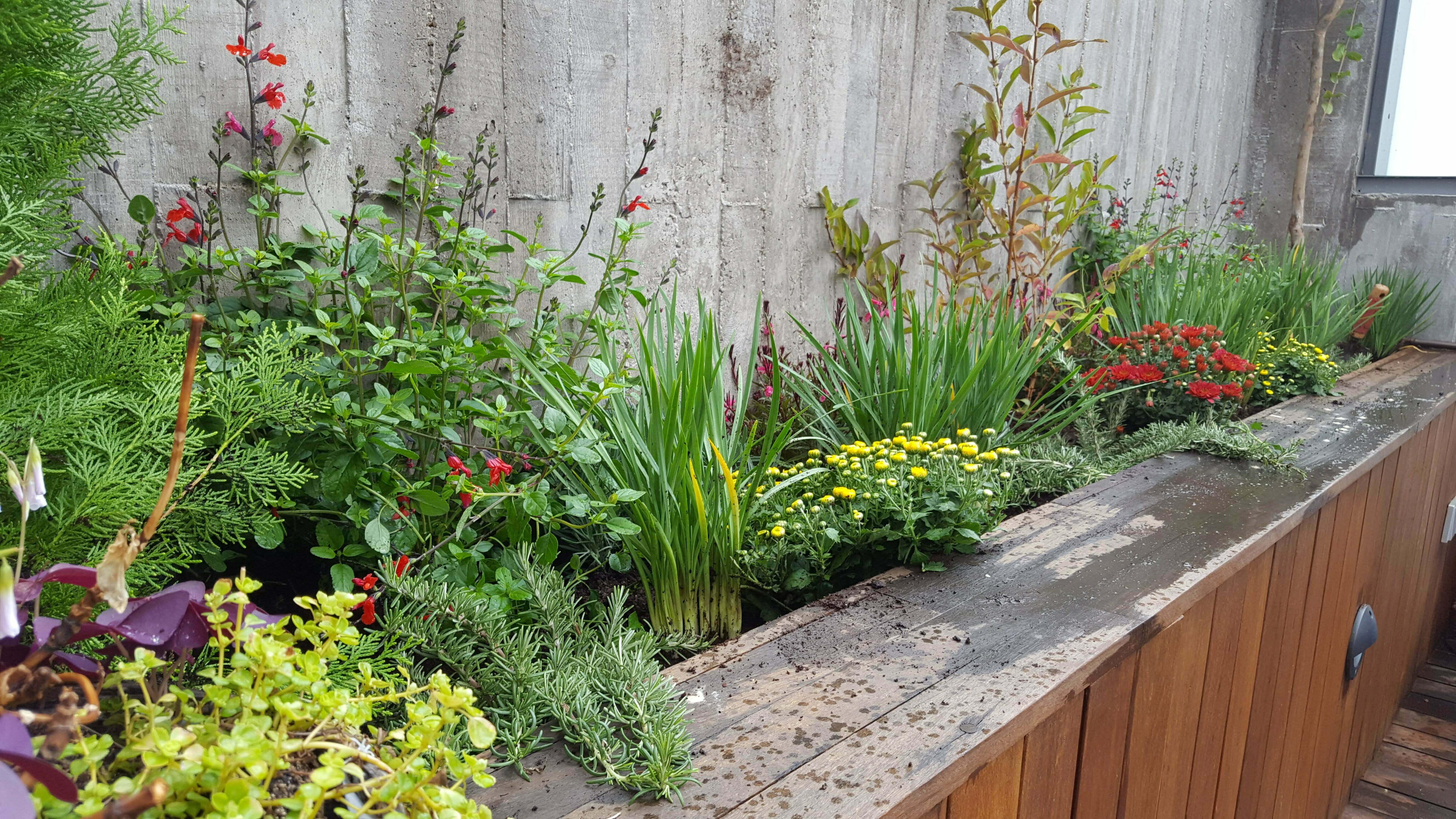 Dise o de jardines madrid muspaisajismo for Idea brisa vista para jardin