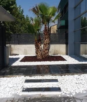proyectos de jardineria las rozas